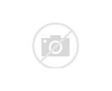 Spanish Version Of Paleo Breakfast Bible Review-Spanish Version Of Paleo Breakfast Bible Download