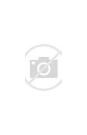 Gout Solution Review-Gout Solution Download