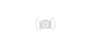 Link Indexr Agency Trial Download