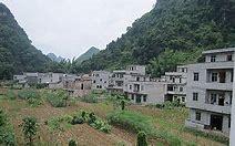 东平县新闻网 的图像结果