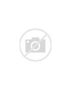 舒曼Schuman 的图像结果