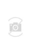 武平县新闻网 的图像结果