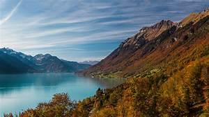 Wallpaper, Mountains, 4k, 5k, Wallpaper, 8k, Water, Lake, Forest, Os, 8164