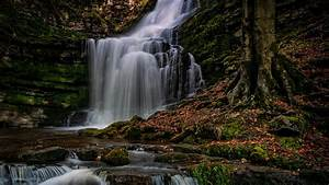 Waterfalls, Stream, And, Stones, With, Moss, Hd, Nature, Wallpapers