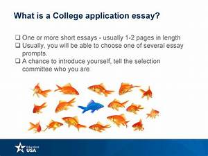 Thesis Statement Persuasive Essay College Application Without Essay Format Catching Fire Essay Custom Writing Canada also Wonder Of Science Essay College Applications Without Essays Format Argumentative Essay  Freelance Writing Services Chicago